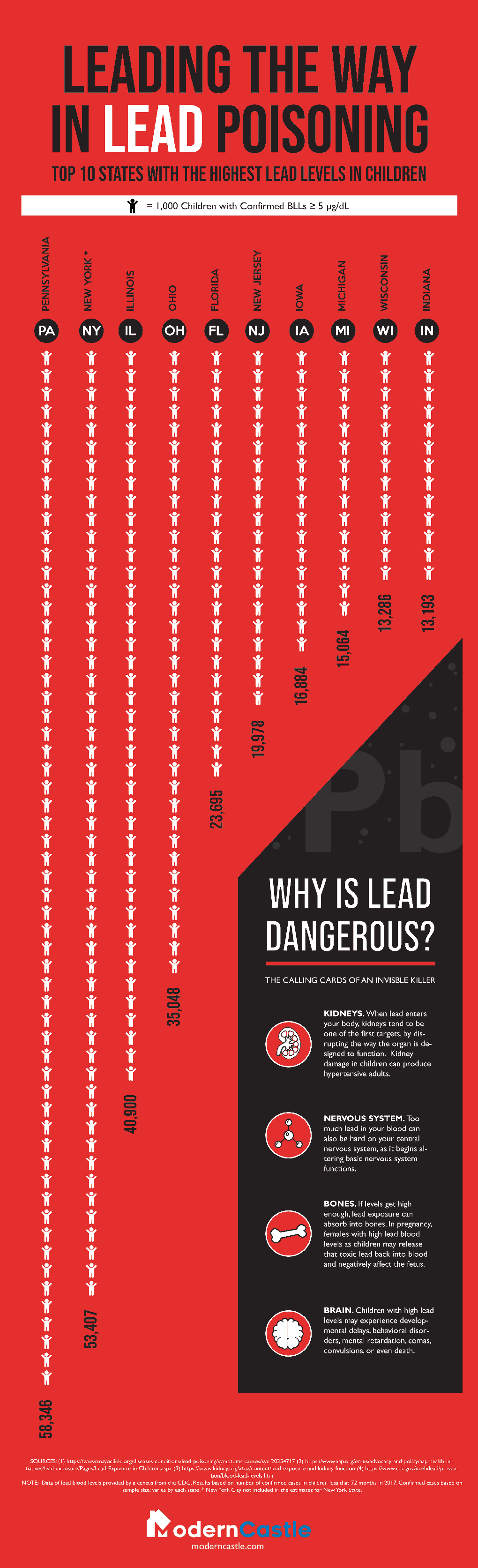 Lead Poisoning Children in the USA